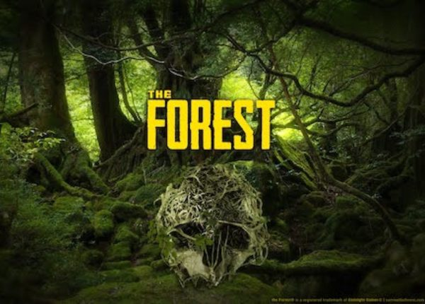 the forest 1.0