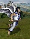 aniol