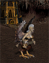 harpia-wiedzma
