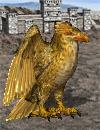 ptak-gromu